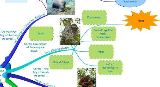 The Twelve Months of Endangered Animals Song sloth
